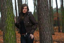 Free Autumn 5 Royalty Free Stock Photography - 3670777
