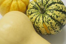 Free Squashes Royalty Free Stock Photography - 3671857