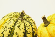 Free Green And Yellow Ornamental Squashes Stock Photos - 3672293