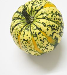 Free Green And Yellow Ornamental Squash Royalty Free Stock Photography - 3672327