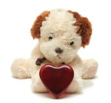 Greeting Card - Toy Dog With Heart In A Box 04 Royalty Free Stock Photos