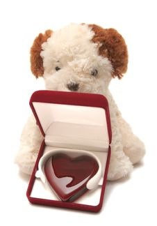 Free Greeting Card - Toy Dog With Heart In A Box 02 Royalty Free Stock Photography - 3672547