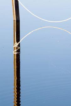 Free Reflections Stock Photo - 3672580
