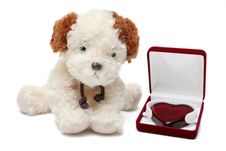 Greeting Card - Toy Dog With Heart In A Box 03 Stock Photos