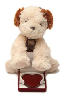 Greeting Card - Toy Dog With Heart In A Box 06 Royalty Free Stock Image