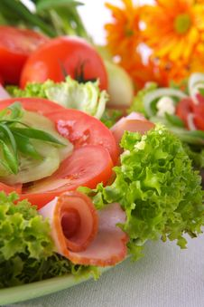Free Fresh Salad With Onion Tomato And Basil Stock Photography - 3673062