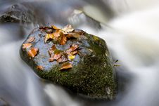 Hidden Brook In Autumn Stock Photo