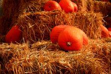 Pumpkins On Straw Bales 2 Royalty Free Stock Photos