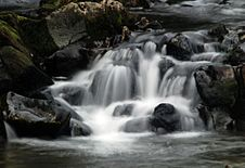 Free Slow Shutter Water Fall Stock Images - 3676544