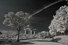 Infrared Photo – Tree, Skies And Building Stock Photography