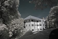 Infrared Photo – Tree, Old House And Cloud Stock Photos
