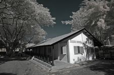 Free Infrared Photo – Tree, Old House And Cloud Royalty Free Stock Photo - 3677775