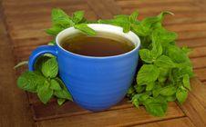Free Mint Tea Stock Image - 3679301