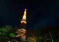Free Tokyo Tower At Night Royalty Free Stock Image - 36711266