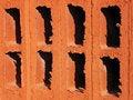 Free Brick Cells Stock Photos - 3685553