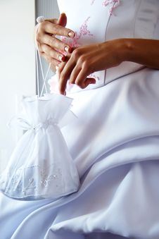 Free Bride With Small Bag In Hands Stock Images - 3680204