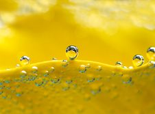 Free Bubbles On Yellow Lilly Stock Image - 3680511