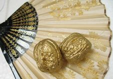 Free Two Walnuts On A Fan Stock Images - 3681774