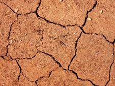 Drought Royalty Free Stock Photography