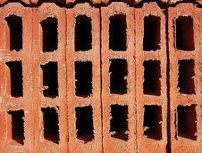 Adobe Cells Stock Image