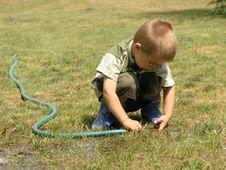 Boy Plays In The Garden Stock Photos