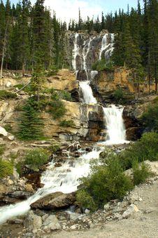 Free Tangle Falls Royalty Free Stock Image - 3692286