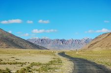 Free Himalayan Road Royalty Free Stock Image - 3693426