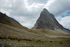 Free Himalayan Scenic Royalty Free Stock Image - 3693636