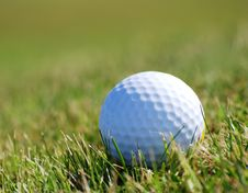 Free Golfball On Grass Royalty Free Stock Photo - 3694845