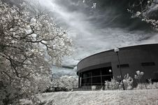 Infrared Photo – Tree, Building And Cloud Stock Photo