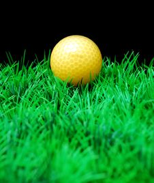Free Golfball Royalty Free Stock Photography - 3695187