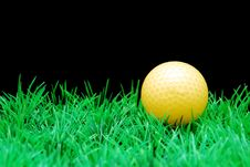 Free Golfball Royalty Free Stock Photos - 3695238