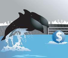 Dollar And Dolphin Royalty Free Stock Photography