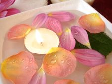 Free Candle With Petals Of Flowers Royalty Free Stock Photography - 3695957