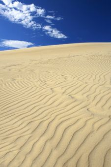Free Sand Dunes Vertical View Royalty Free Stock Photos - 3696938