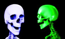 Free Two Skull Royalty Free Stock Photo - 3696945