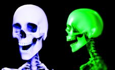 Free Two Skull 2 Stock Image - 3696991