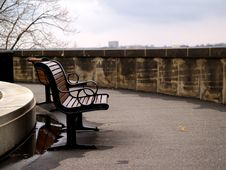 Free Bench Stock Photography - 370062