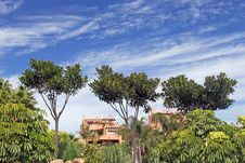 Free Luxury Apartment Block In Puerto Banus On The Costa Del Sol Stock Images - 370234