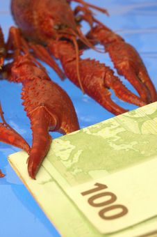 Free Crawfish And Euro Royalty Free Stock Photo - 371895