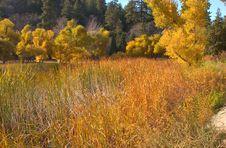 Free Mountain Lake In Fall Stock Photo - 374970