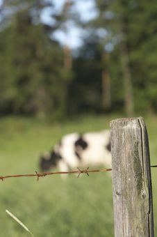 Free Farmland Stock Image - 376841