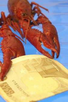 Free Crawfish And Euro Stock Photo - 377390
