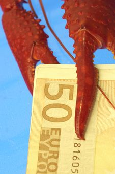Free Craw-fish And Euro Stock Photography - 377392