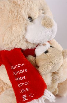 Free Teddy Bear Royalty Free Stock Photography - 379437