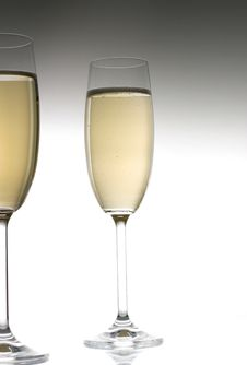 Free Champagne Glass Royalty Free Stock Photo - 3703765