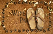 Free Wipe Your Paw Stock Images - 3707104