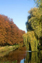 Free Autumn Landscape Royalty Free Stock Images - 3713309