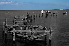 Free Old Pier Supports In Sea Stock Images - 3710084