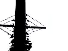 Free Telephone Pole With Barbed Wire Royalty Free Stock Photos - 3710268